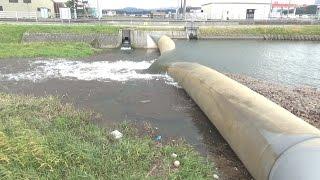 北条川放水路分水堰操作研修