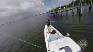 Stuart FL - Fishing for Snappers Black Grouper and