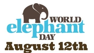 World Elephant Day | August 12