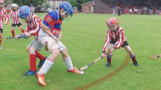 Primary School Shinty World Cup