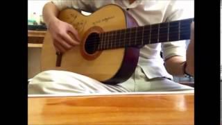 hoa dại guitar cover