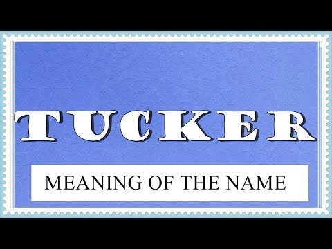 MEANING OF THE NAME TUCKER, FUN FACTS, HOROSCOPE