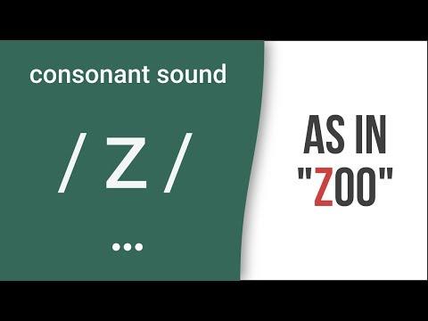 "Consonant Sound / Z / As In ""zoo"" – American English Pronunciation"