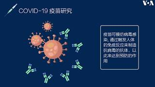 新冠肺炎疫苗与治疗研究进展