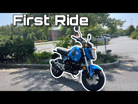 Download 2022 Honda Grom First Ride/Review