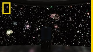 The Cosmic Connectome | Cosmos: Possible Worlds