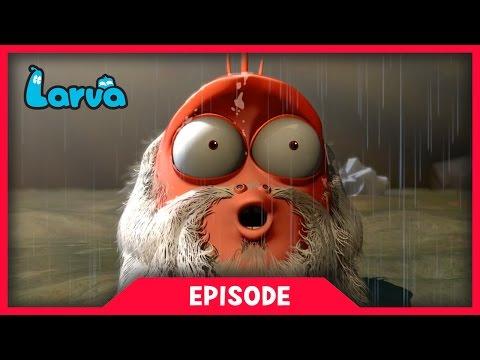 LARVA - NOAH'S ARK | 2017 Cartoon Movie | Cartoons For Children | 라바 | LARVA Official