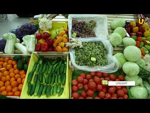 Где в Оренбурге купить качественные и недорогие продукты?