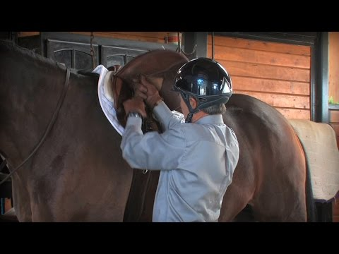 Quick Tip For Keeping Your Saddle From Slipping Back