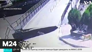 Актуальные новости России и мира за 27 августа - Москва 24