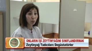 ONLARIN İŞİ ZEYTİNYAĞINI SINIFLANDIRMAK 28.03.2012