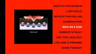 Aerosmith Sick As a Dog / Rocks DVD