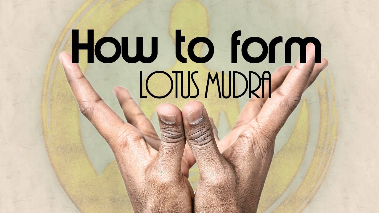 Yoga Mudra Gesture How To Form Lotus Mudra 1859 Youtube