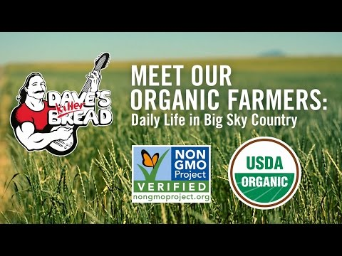 Meet Our Organic Farmers: Daily Life in Big Sky Country