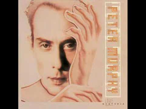 peter-murphy-indigo-eyes-sweatingfretboards