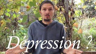 Pourquoi la dépression ? comprendre et agir avec efficacité - www.regenere.org