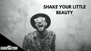 Fisher vs Ying Yang Twins - Shake Your Little Beauty (DJ Jay Carpenter Mashup)