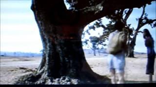 Cat Symbolism in Buddhadeb Dasgupta's film - Mondo Meyer Upakhyan