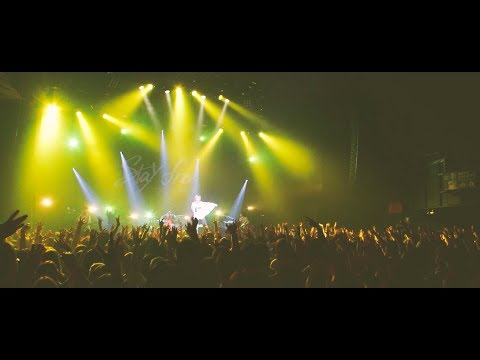 YELLOW FEVER DANCE(LIVE)/ ASH DA HERO