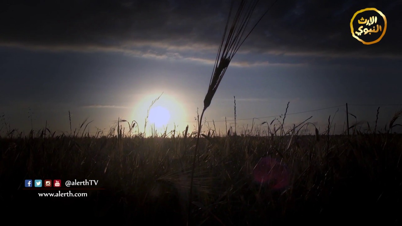 برومو - برنامج دقيقتان مع عباد الرحمن - #رمضان_أمة_واحدة _ @alerthTV