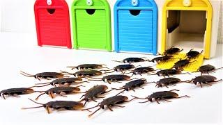 タヨ、ディズニー カーズ、おもちゃのゴキブリのモンスターのはなし、木製トーマス