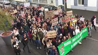 Marche pour le climat: les lycéens de Despiau donnent de la voix