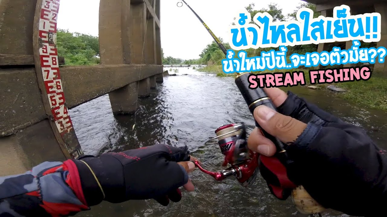 ตกปลาน้ำไหล!! น้ำใหม่ฤดูนี้จะเจอตัวมั้ย?? มาตามหาดู!! Stream Fishing