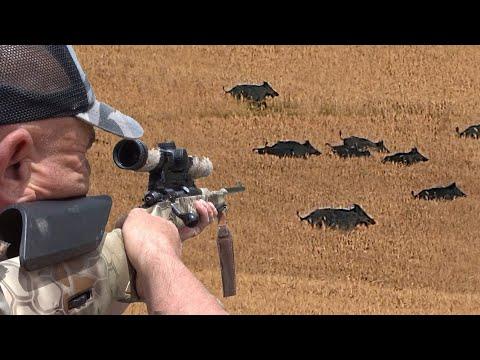 Muhteşem  Atışlar ile Ekin Tarlasında  Yaban Domuzu Avı, Best Wild Boar Hunting with Amazing Shots