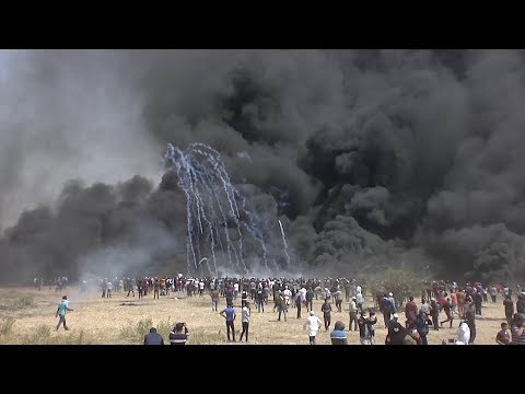 The Protests in the Gaza Strip, One Year On
