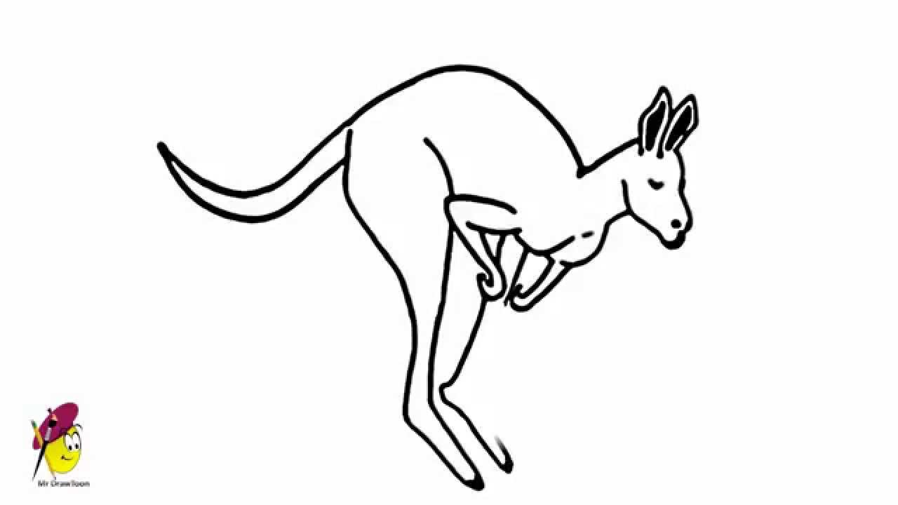 Uncategorized Kangaroo Drawings kangaroo how to draw a youtube