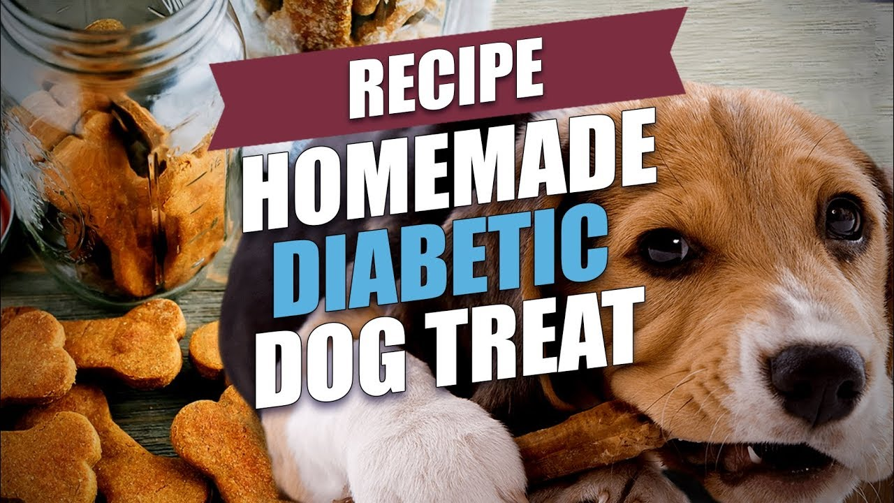 is pumpkin good for diabetic dogs