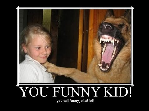 Awesome Funny Pictures That Will Make You Laugh Every Time
