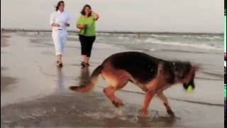 The Edwards Law Firm Video - Autumn on the Beach   The Edwards Law Firm