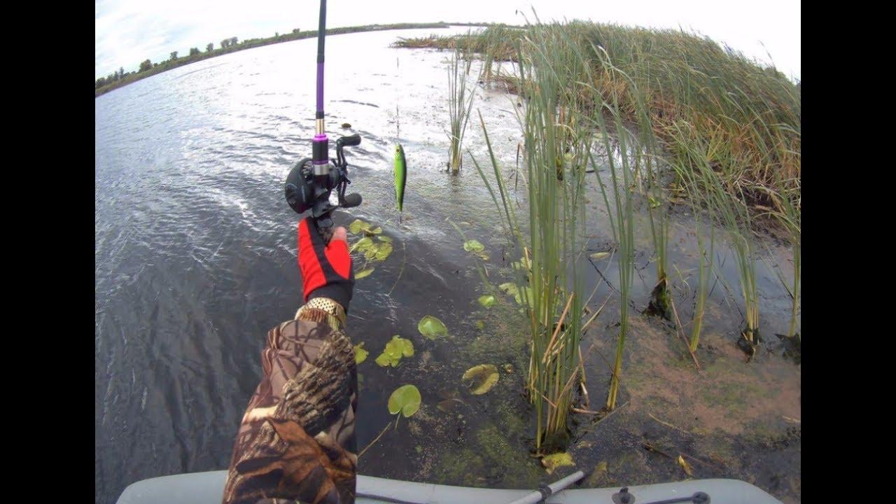 рыбалка на амуре поплавочной удочкой