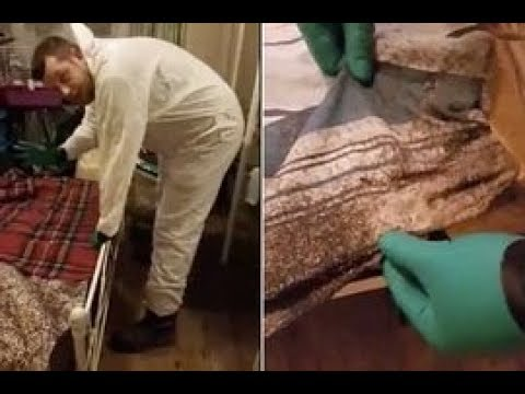 Thousands of bugs crawl over bed where married couple slept for SIX YEARS
