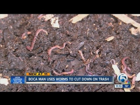 Boca man using worms to reduce waste