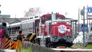 わたらせ渓谷鐵道 トロッコ列車「花桃号」2015 9717列車 2014.04.12