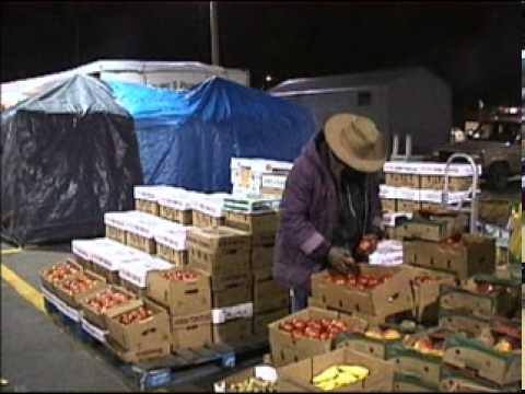 Tampa Night Market