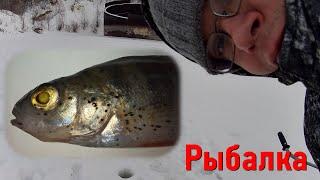 Рыбалка в Самаре Экстрим выезд в буран