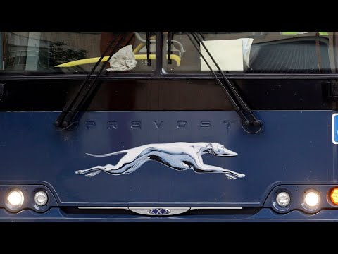 Greyhound ending bus service in Canada-wide shutdown | How will this impact small communities?