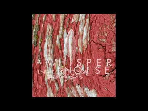 A Whisper in the Noise - Black shroud
