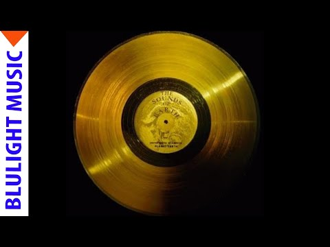 Blulight Gold Music! Live Streaming!