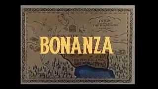 Tu amante bonanza