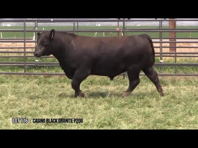 Dal Porto Livestock and Rancho Casino Lot 116