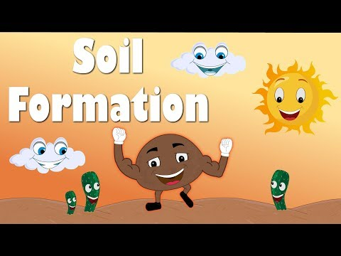 Soil Formation for Kids | #aumsum #kids #education #science #learn