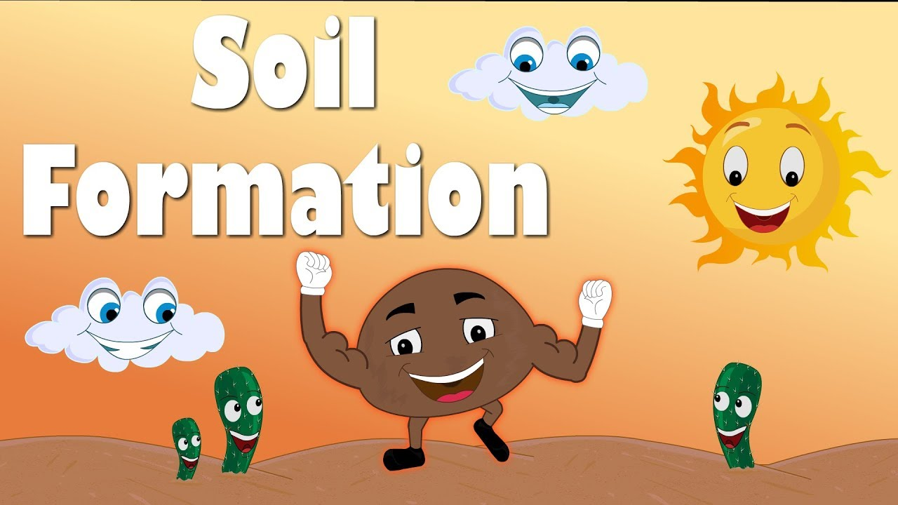 hight resolution of soil formation for kids aumsum kids education science learn