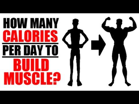 Diet plans protein