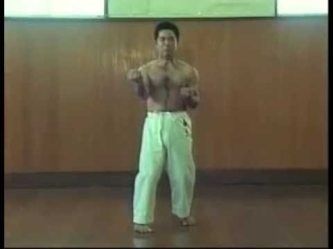 GOJU-RYU SANCHIN KATA by MORIO HIGAONNA