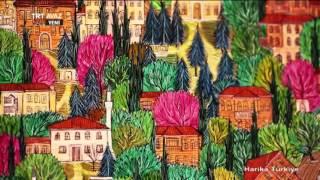 Minyatür Sanatını Tanıyalım - Gülçin Anmaç Anlatıyor - Harika Türkiye - TRT Avaz