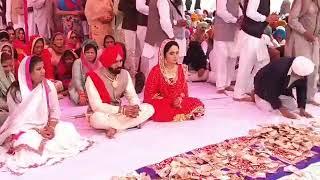 AAP Mla Baljinder Kaur got Married To Sukhraj Ball